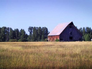 This is a photo of the historic barn in the town of Chester on Lake Almanor.