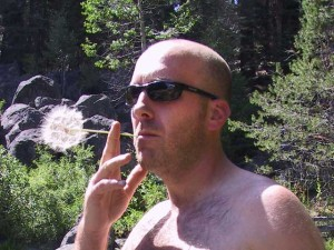 This is a picture of a man in dark sunglasses with a bald head holding a stem of a large dandelion weed flower in his mouth as if he was smoking a cigarette.