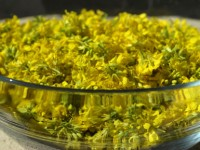 This is a photo of a glass bowl full of bright yellow mustard flowers.